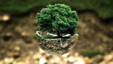 Se former aux métiers qui préservent notre planète