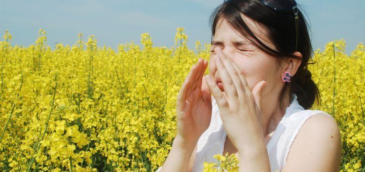 Le risque d'allergie aux pollens est très élevé cette année