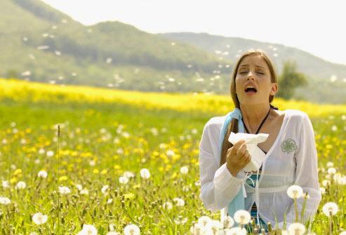 L'allergie au pollen