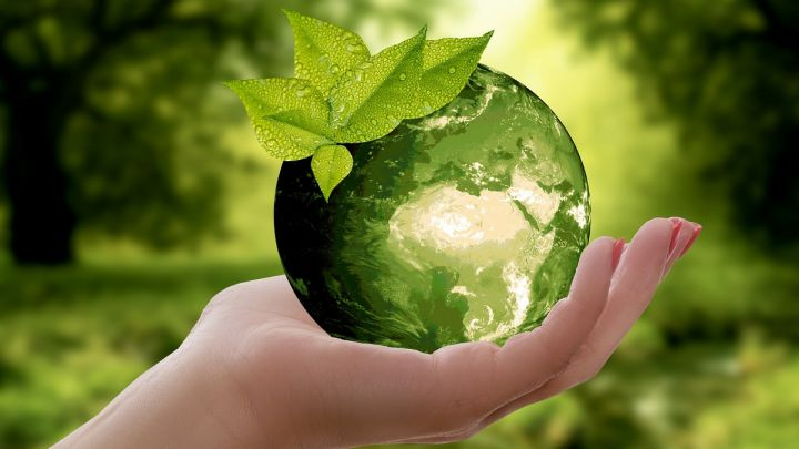 Formez-vous aux métiers de l'environnement